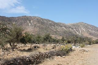 20130221_1383-Udaipur-Kumbalgarh_resize