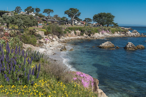 Pacific Grove from life of John Steinbeck