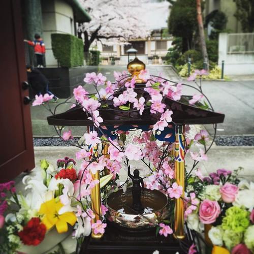 花祭り 甘茶も頂きました
