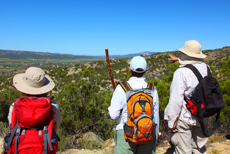 IMG_2678 Pacific Crest Trail near Anza