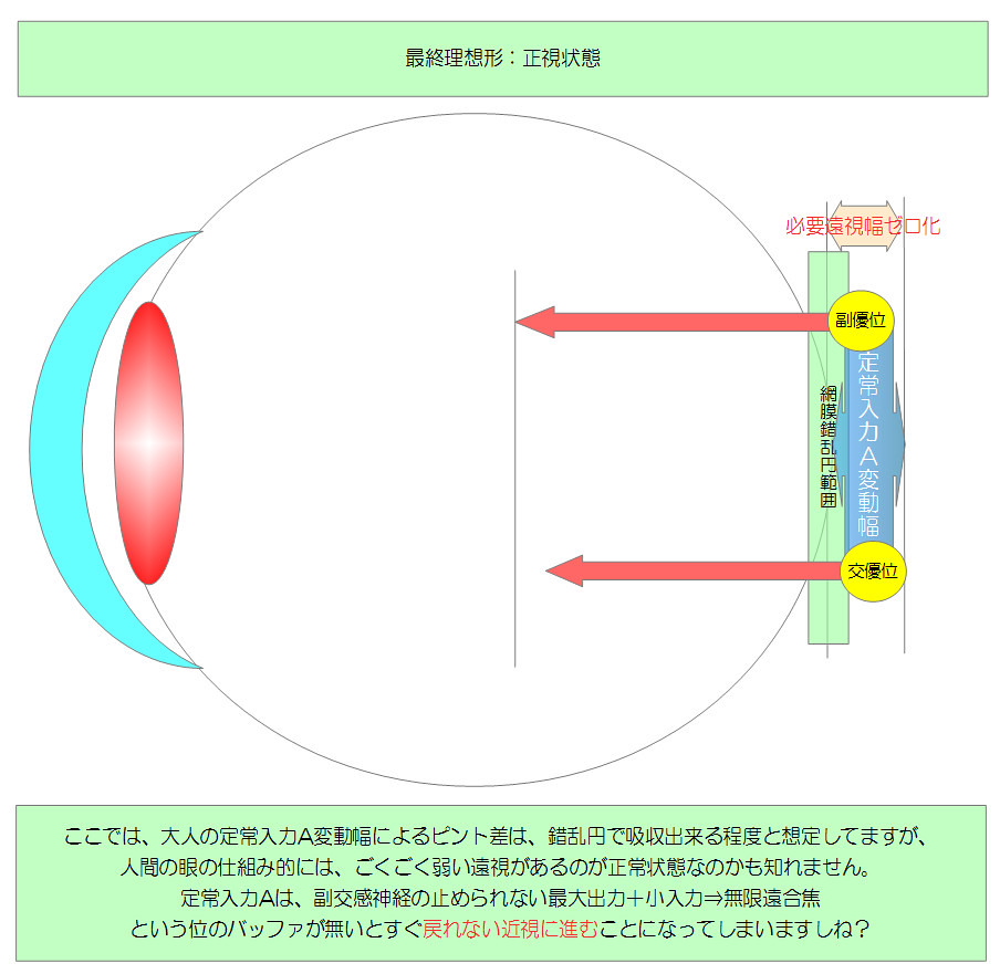視力回復のために知りたい眼のメカニズム|独自まとめその10用05|最終理想系:正視状態|真・視力回復法|視力回復コア・ポータル