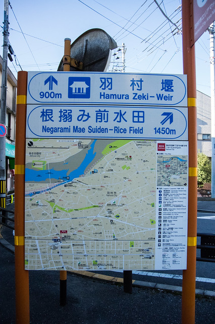 tokyo reporter 島旅&山旅