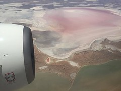 Up in the air, Kati Thanda - Lake Eyre. Today's #nofilter special. The lake flash fills only a few times a century, including now. When it does, it becomes the largest lake on the continent, and water birds of all sorts from afar somehow know to descend o