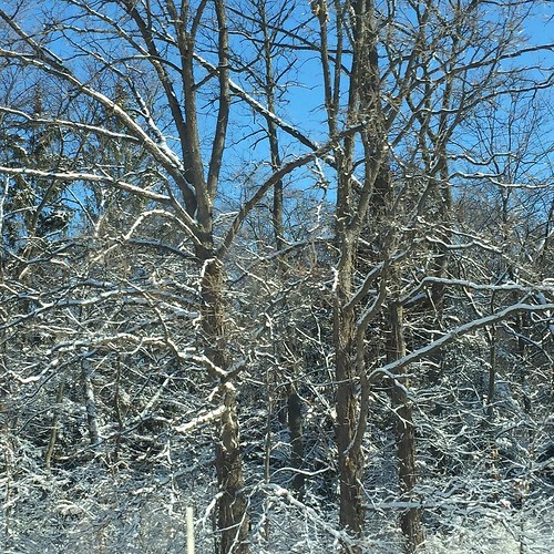 #latergram Driving thru Indiana #winter #indiana #snow #white