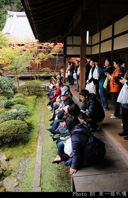 京都-永觀堂094