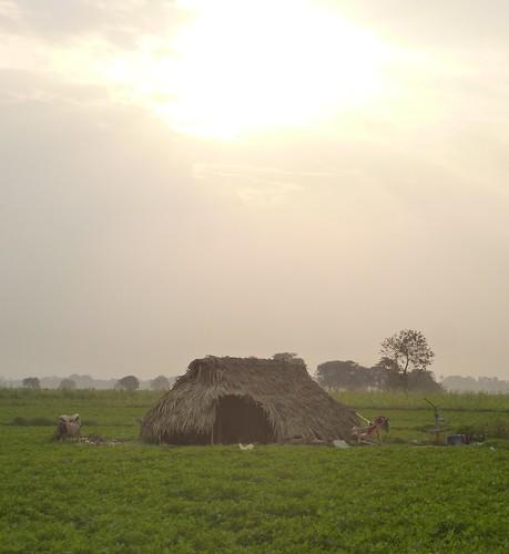 M16-Mandalay-Amarapura-Pont U Bein (29)