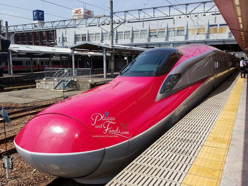 jr E6 shinkansen