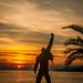 Freddie Sunset