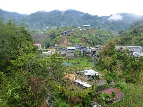 P16-Luzon-Mayoyao-Terrasses (14)