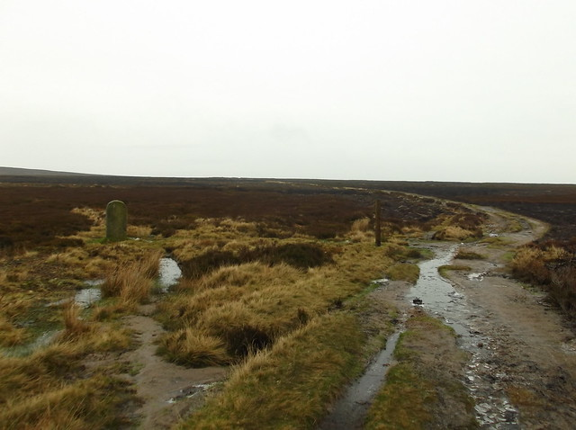 Bingley to Ilkley walk 033