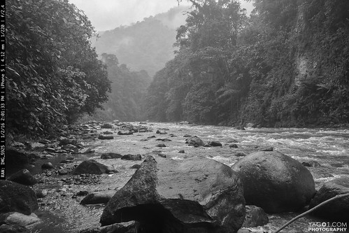 wild black landscape ecuador mindo riosaloya