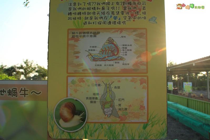 小品蝸牛觀光農場一015