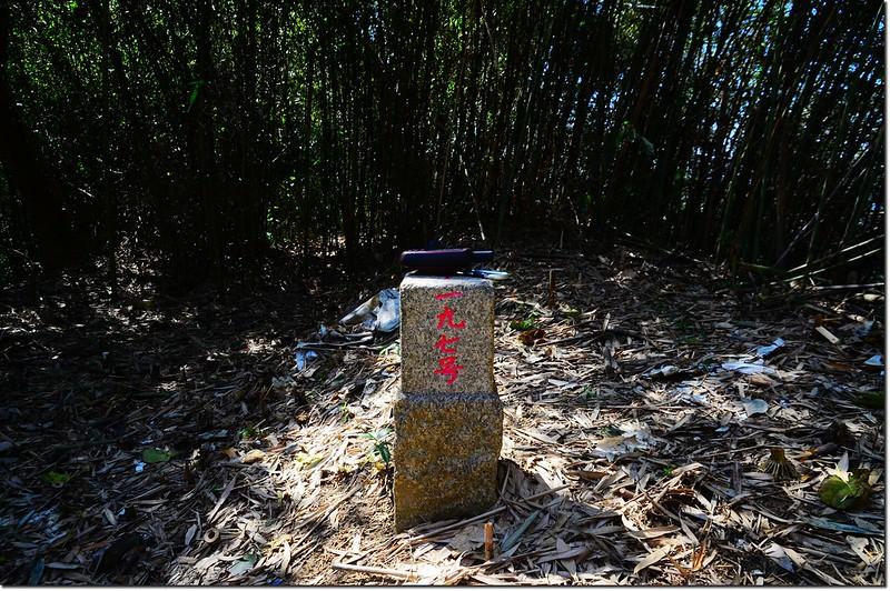 他里溫山三等三角點(#197 Elev. 373 m) 1