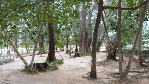 Thailand-0864