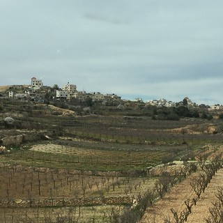Hebron Palestine 2016