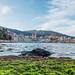 Vieux Port de Bastia by Daryshoot