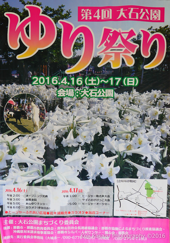 第4回大石公園ゆり祭り 2016-14