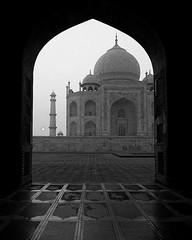 by @thingy_bobby #mytajmemory #IncredibleIndia #tajmahal #tajmahal, #agra