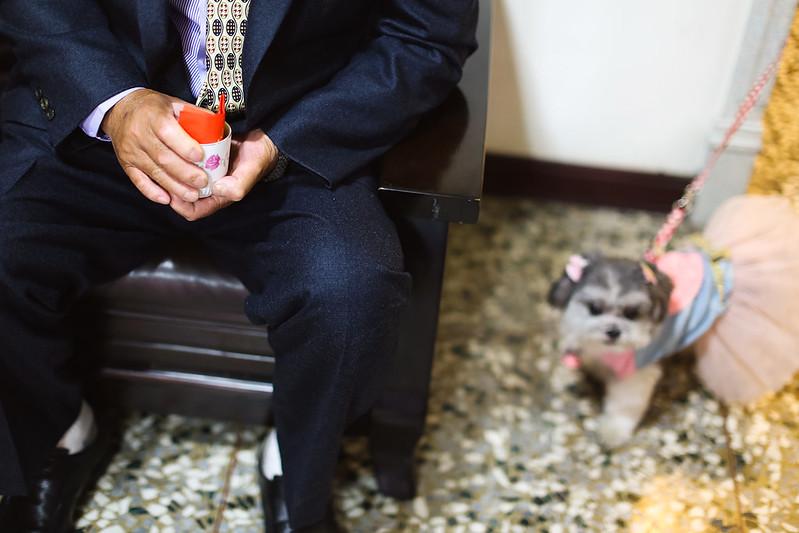 海港城,顏氏牧場,後院婚禮,極光婚紗,海外婚紗,京都婚紗,海外婚禮,草地婚禮,戶外婚禮,旋轉木馬_0021