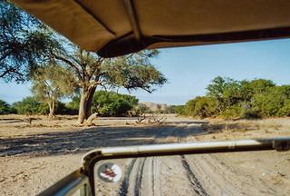 Pirschfahrt im Aba-Huab Gebiet, Damarland