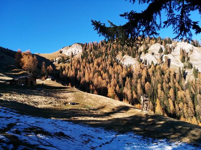 Blick von der Kühwiesenhütte auf den Kühwiesenkopf