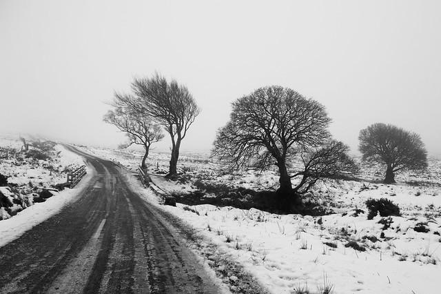 Wicklow Winter