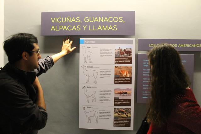 museu-historia-natural-santiago2