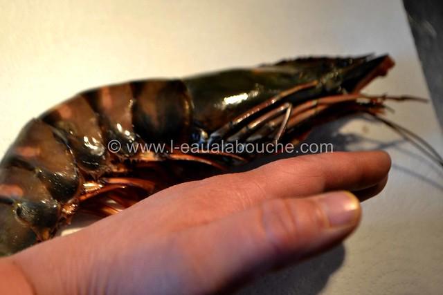 Crevette Géante et Saumon Grillés Crème à la Mangue Pimentée © Ana Luthi Tous droits réservés 04_GF