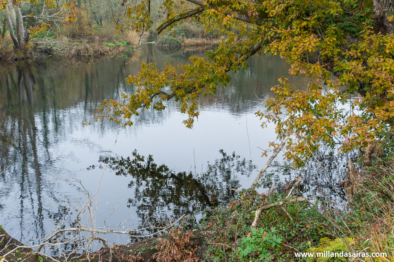Aunque no lo parezca demasiado, el río baja con bastante fuerza...