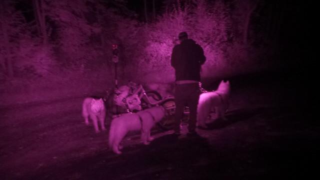 Midnight Mushers Stony Creek 9.21.2015