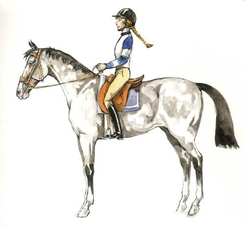 Position idéal cavalier
