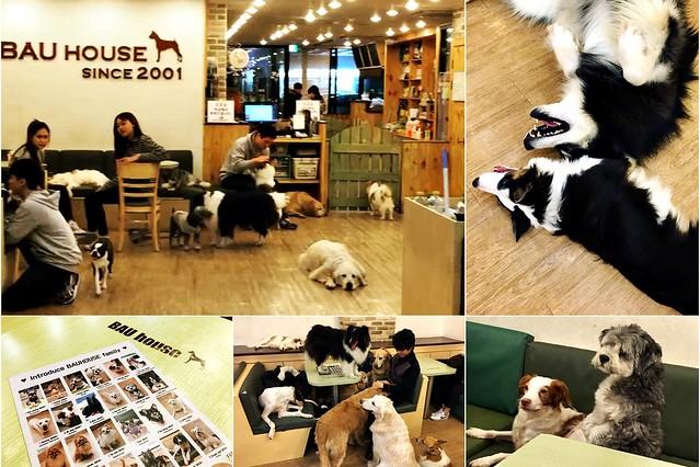 Bau House (Hongdae)