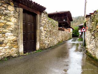 Camino Primitivo - 1 Oviedo-Grado (98)