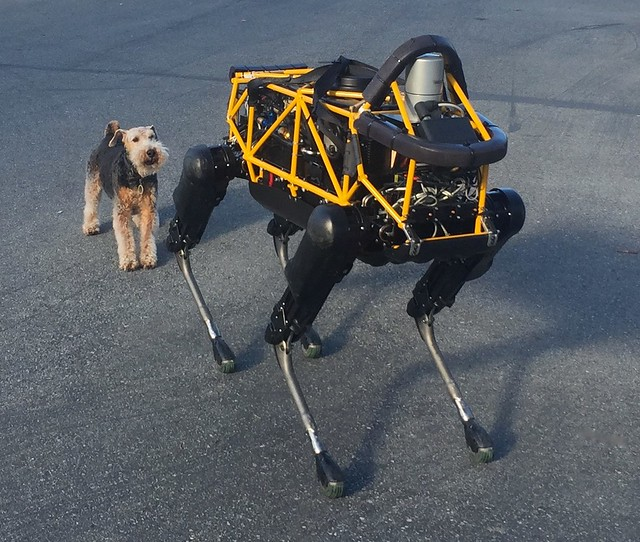 See Spot Run — Dog vs. Robot