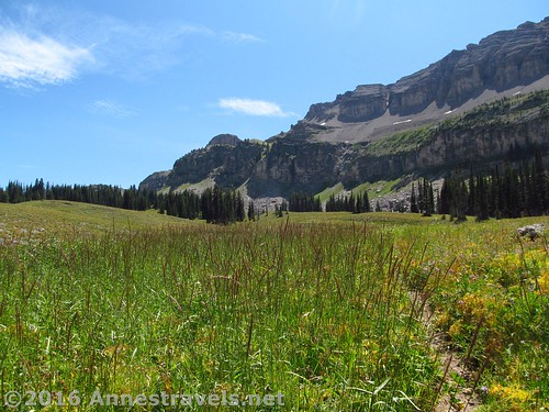 The trail to the Alaska Basin Overlook starts out pretty inauspiciously, but becomes more obvious later. Jedediah Smith Wilderness and Grand Teton National Park, Wyoming