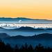 San Francisco Landscape 2 by michaelruiz9