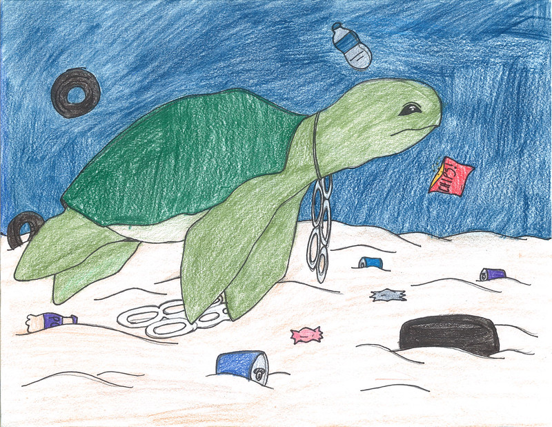 Green City, Clean Waters Art Contest: 1st Place, 9th to 12th Grades