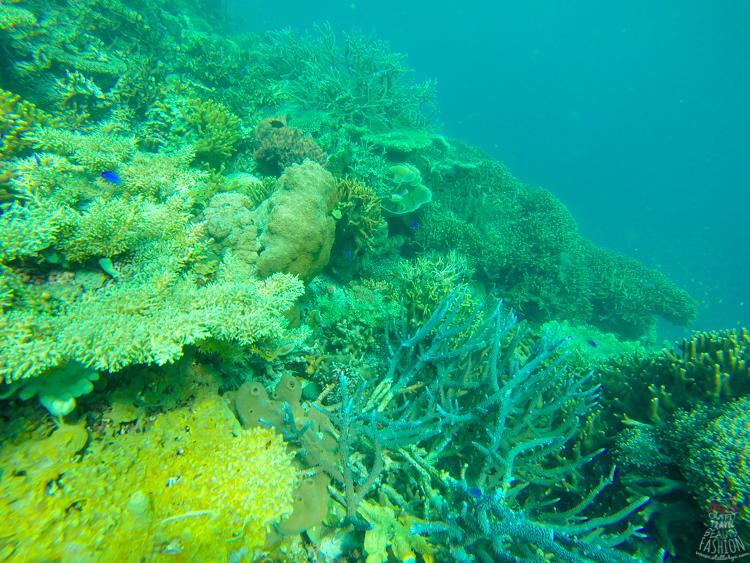 雙峰礁岩2