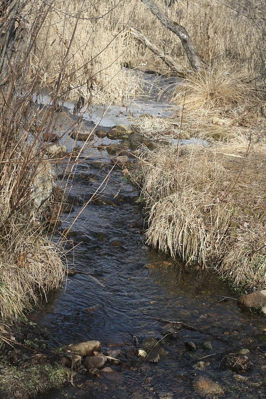"""Daphne's"" creek"