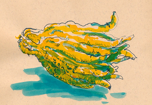 Sketchbook #93: Hand of Buddha