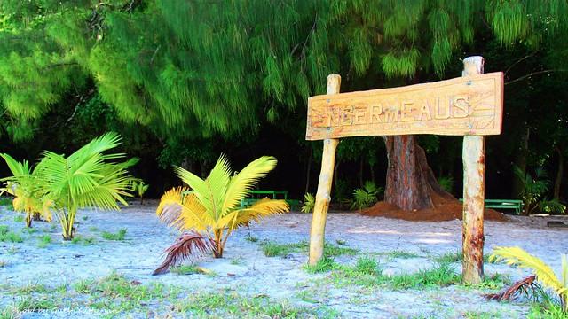 無理を言って無人島に上陸させてもらっての朝ごはんです♪