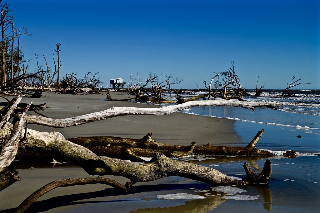 Indomitable Lady - Hunting Island - SC - Download Photo
