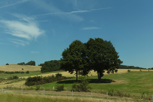 trees france clouds landscape europe meadows july arbres nuages prairies vosges 2015 champagneardenne meteorry aouze alsacechampagneardennelorraine alsacechampagneardennelorrain removille