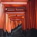 Kyoto - Fushimi Inari Taisha by Mathieu Noel