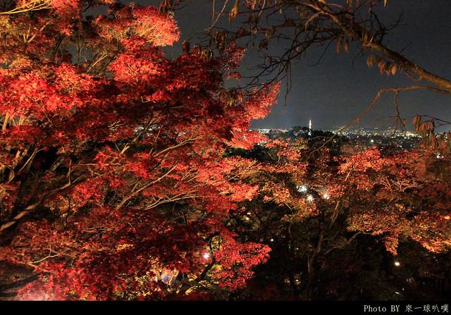 京都-清水寺114