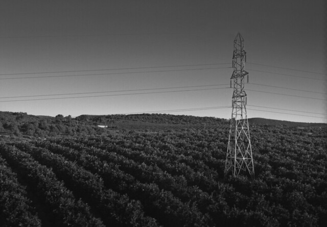 Powerlines among crops in a field somewhere between Madrid and Sevilla (2016)