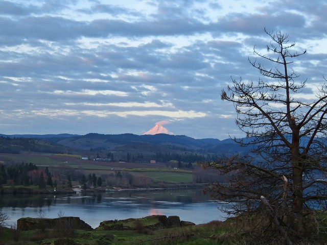 Mt. Hood across the Columbia River