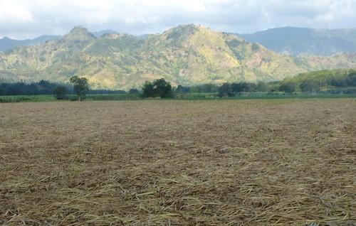 P16-Negros-San Carlos-Dumaguete-Route (8)