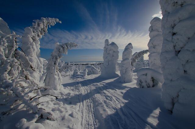 Snowy winter landscape - Riisitunturi