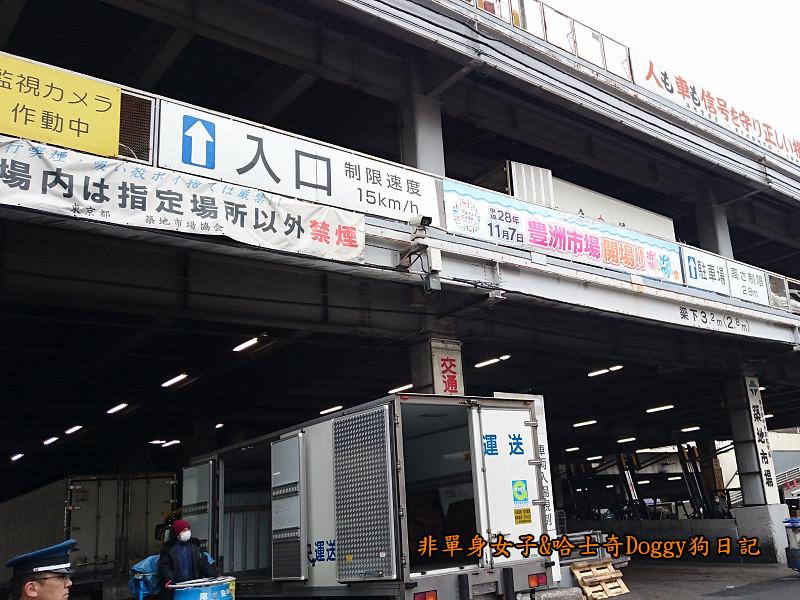 日本築地市場海膽蓋飯03